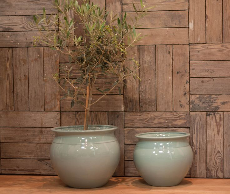 Duck Egg Blue Indoor Fine Ceramic Planter/Cache Pot in two sizes. Small is 24cm high x 28cm diameter approx. Large is 28cm high x 32cm diameter approx. Solid colour. Plant not included.