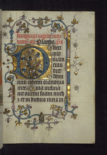 Illuminated Manuscript, Doffinnes Hours, Floral Decoration, Walters Manuscript W.185, fol. 172r by Walters Art Museum Illuminated Manuscripts, via Flickr