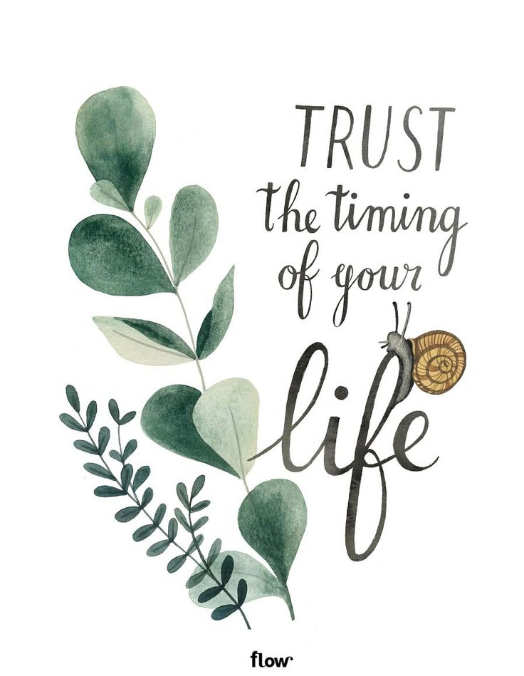 Trust the timing of your life. Inspirational Quote