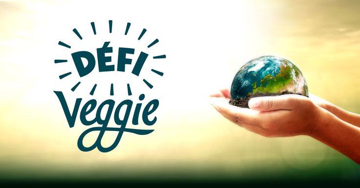 Préserver la planète commence par notre assiette ! Avec le Défi Veggie, Agissez de manière ludique, joyeuse et efficace pour le climat. Préparez-vous !