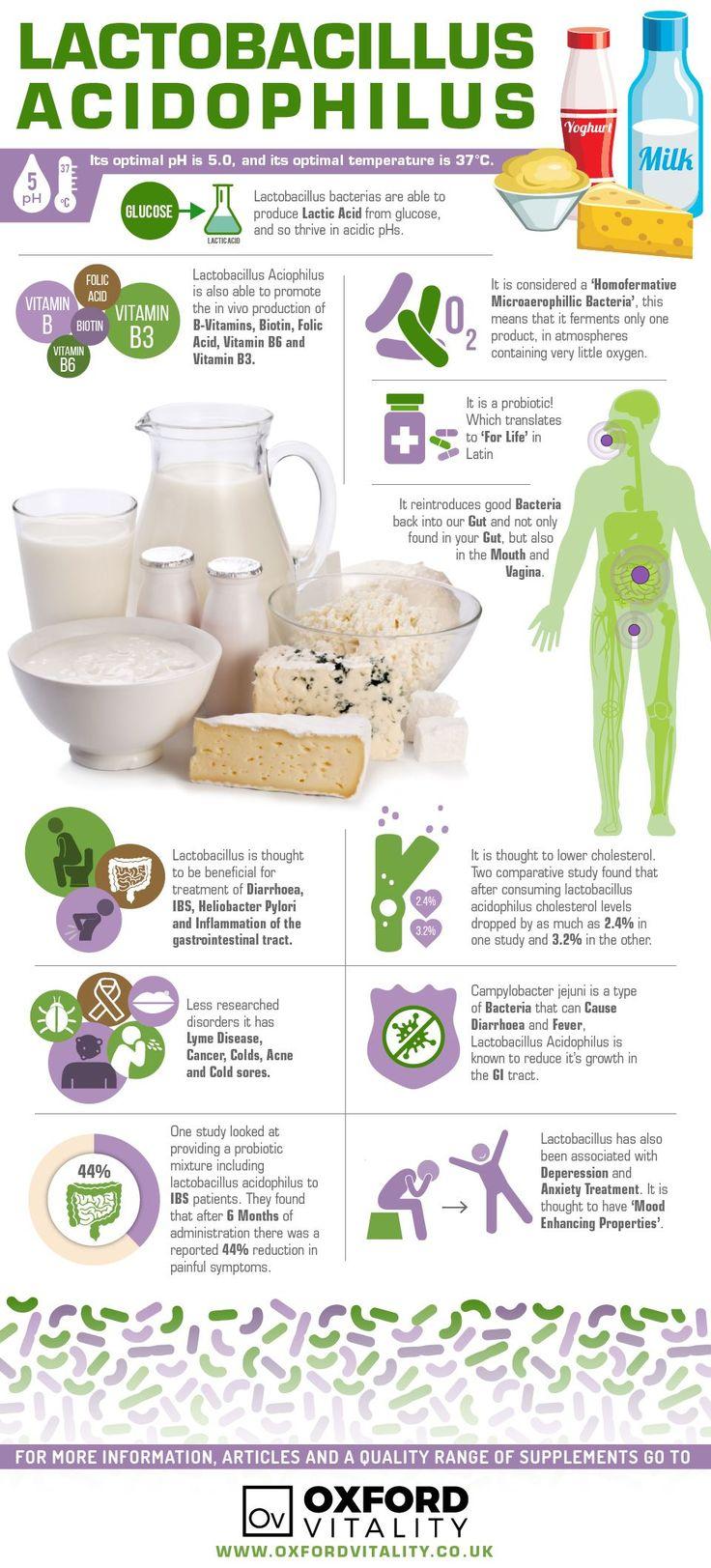 Lactobacillus Acidophilus , Lactobacillus Acidophilus Supplements , Lactobacillus Acidophilus Tablets, Lactobacillus Acidophilus History, Health Benefits of Lactobacillus Acidophilus.