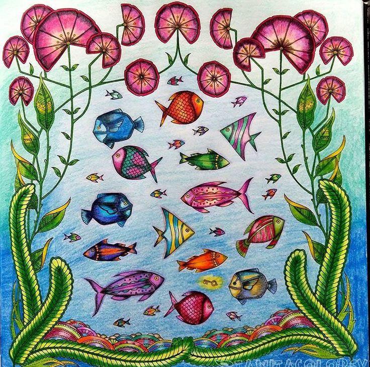 Pin Von UCpharmD 13 Auf Lost Ocean Page 26 Fish And Flower