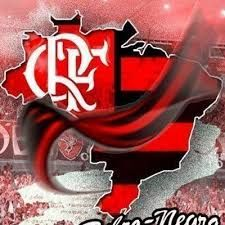 Resultado de imagem para mascote do flamengo