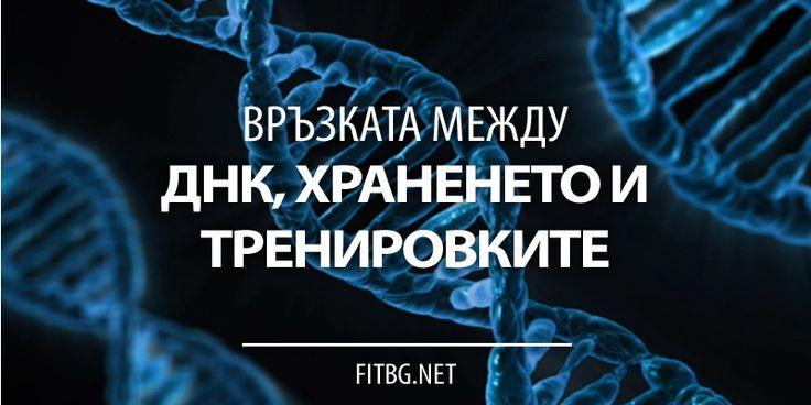 Връзката между ДНК, храненето и тренировките