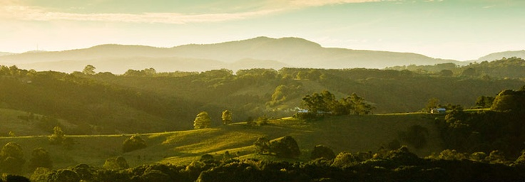 Rolling Hills of Bangalow