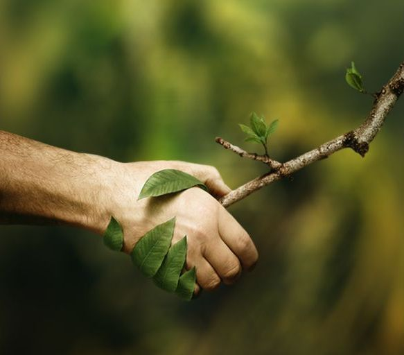 Ecoradar e le 5R dei rifiuti #ecoradar #5Rrifiuti #strategia5R