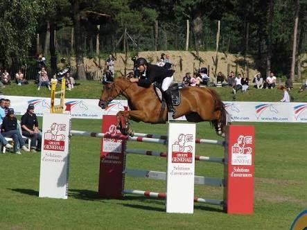 Image result for barrel horse jumps