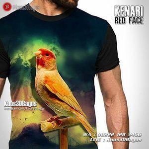 GROSIR Kaos BURUNG - Kenari Red Face - Kaos3D - Kicau Mania, Kaos Burung Murah, https://instagram.com/kaosgrosir.3d, WA : 08222 128 3456, LINE : kaos3dbagus