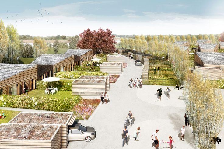 Eco-lotissement de Bagueux I 38 logements I Yzeure - Guillaume Ramillien Architecture Urbanisme Illustration