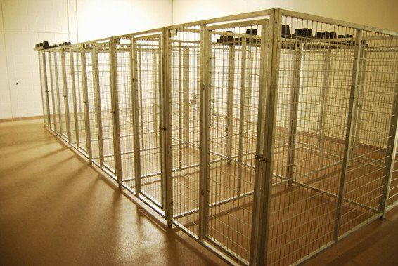 Tk Products Pro Series Multi Dog Kennels Indoor Outdoor