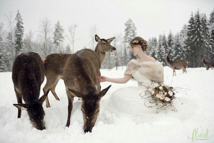 Winter wedding with deer