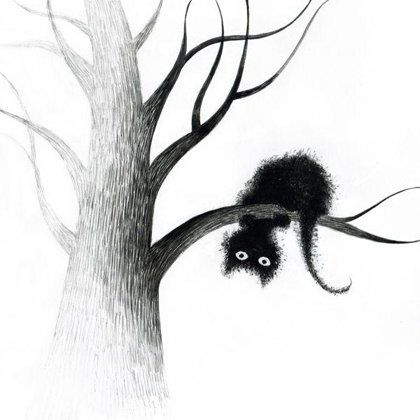 .black Katzen / cats / kitty
