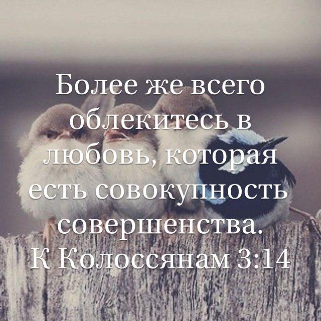 времена стихи из писания о любви бога подарок