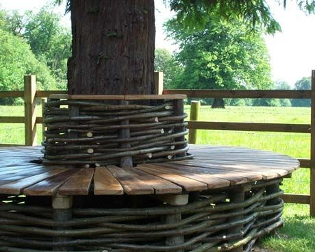 oak + hazel tree seat