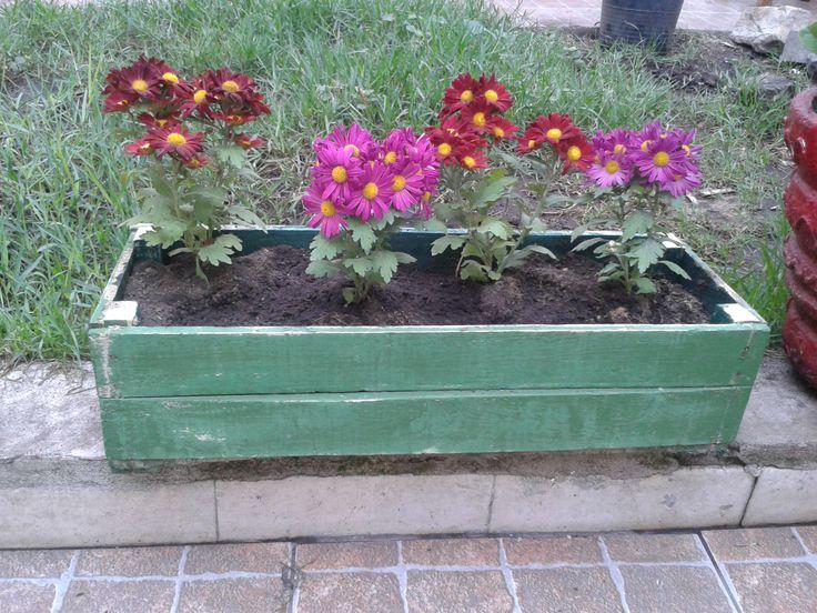 #reciclado #jardin