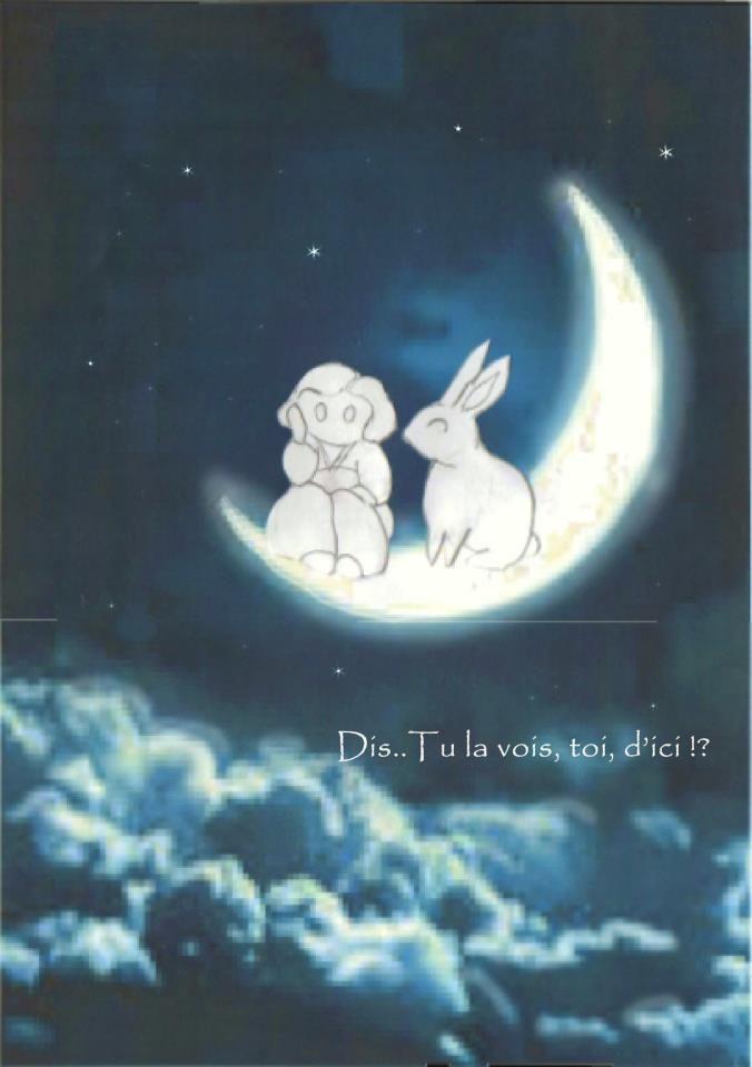 le lapin de la lune