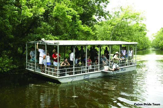 Cajun Pride Swamp Tours, where they feed the alligators. $18 if tickets bought online.