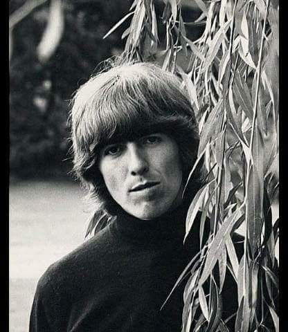 George Harrison, Kinfauns, Esher, Surrey, England, October 7th,1965 Photo by Leslie Bryce