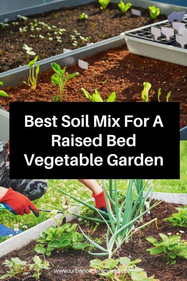Raised Bed Soil Make The Best Soil For A Raised Bed Vegetable