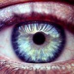 De blauwe oogkleur bij mensen: zeldzaam