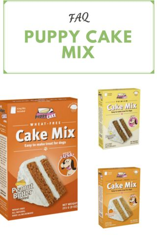 Why puppy cake dog birthday mix is great for celebrating your pet's special day