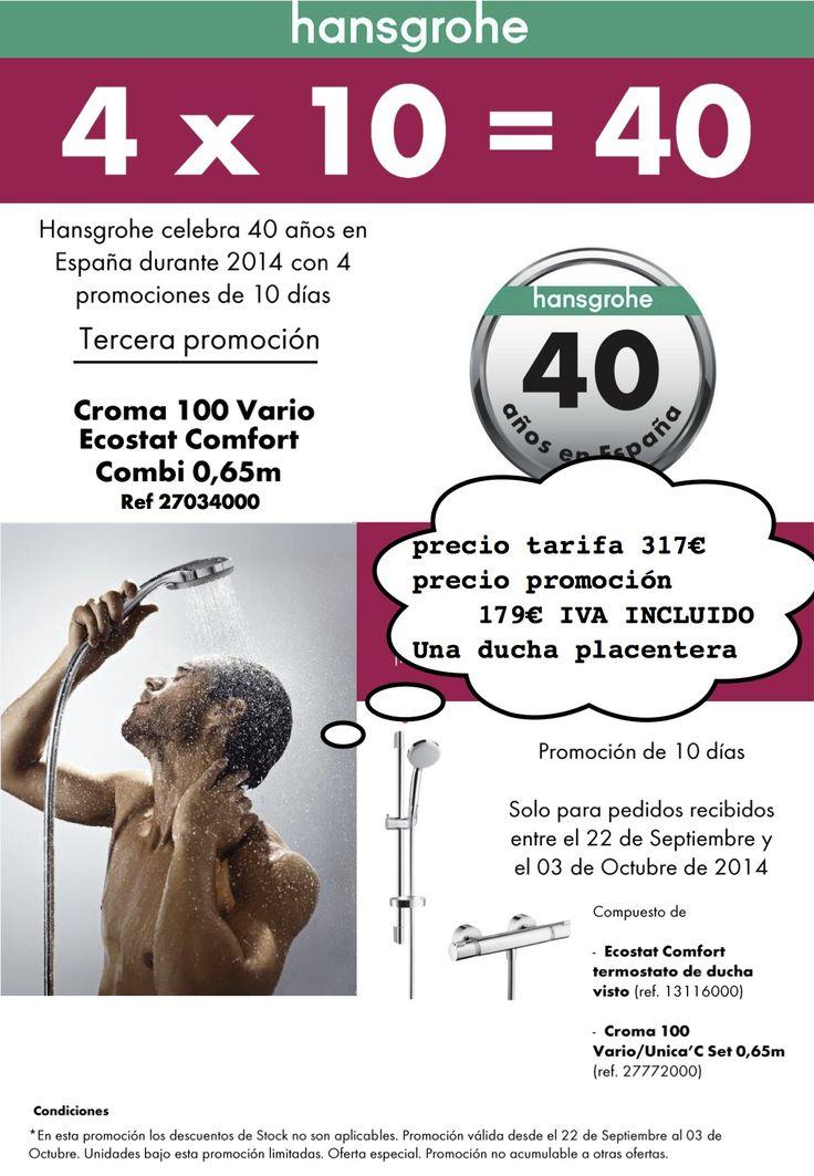 Tercera Promoción 40 Aniversario Hamsgrohe . Grifo con termostato + barra de ducha. Incluye envio a domicilio | PROMOCIONES