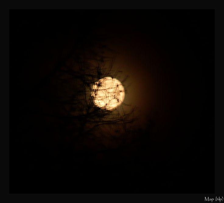 Hidden Luna