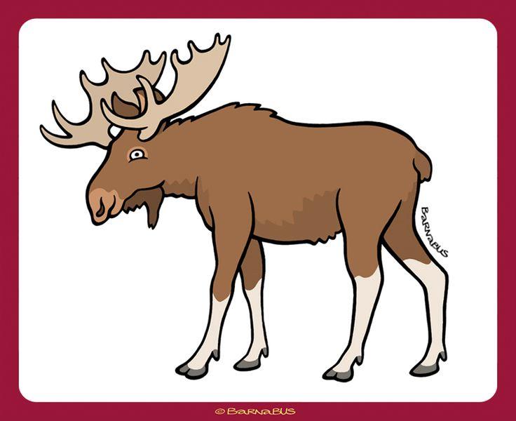 © Barnabus - www - Las rysia eRysia ▪ The Forest of Lynx eRyś - Łoś ▪ #Moose.