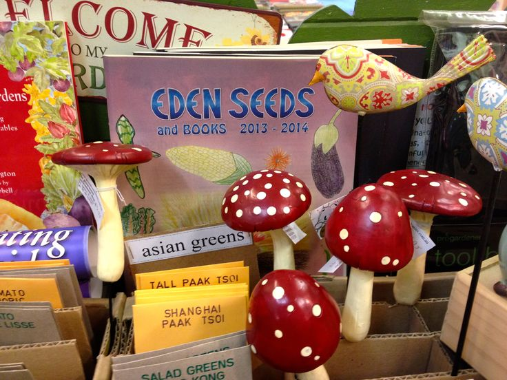 Super cute red and white mushroom garden and pot plant decorations.