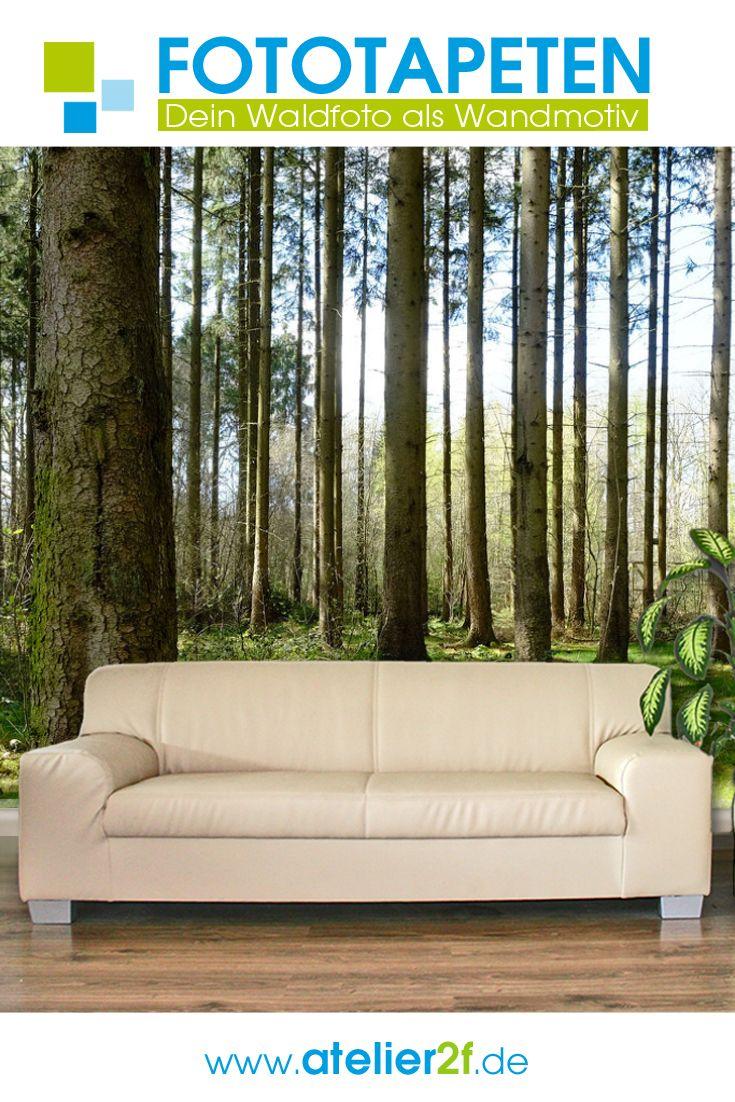 Wald Fototapete Wald Naturbilder Fur Wandgestaltung Homedesign In 2020 Fototapete Wald Tapete Fototapete Wald