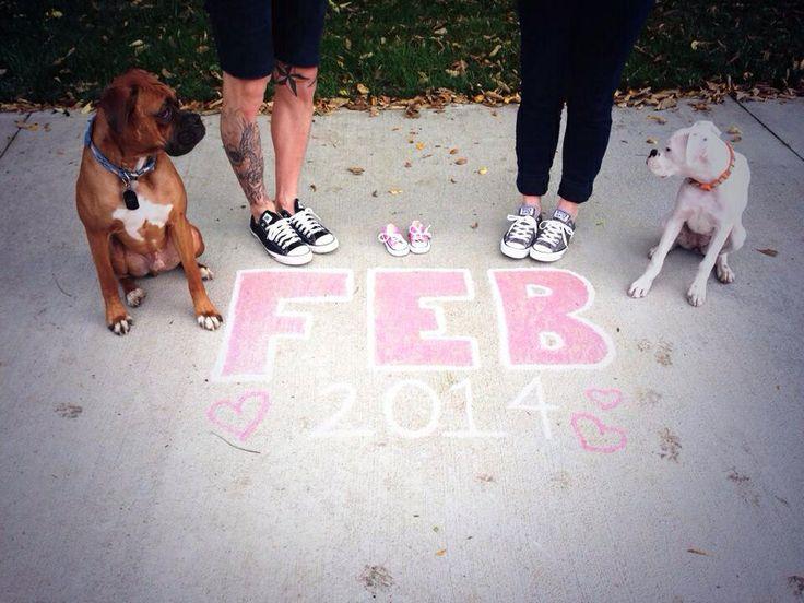 Baby Announcment Dog Baby Announcment Gender Reveal