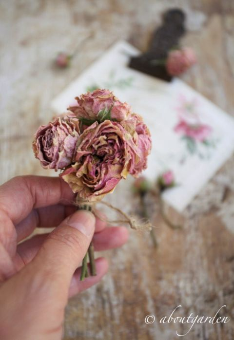 <3 aboutgarden <3 How to dry flowers