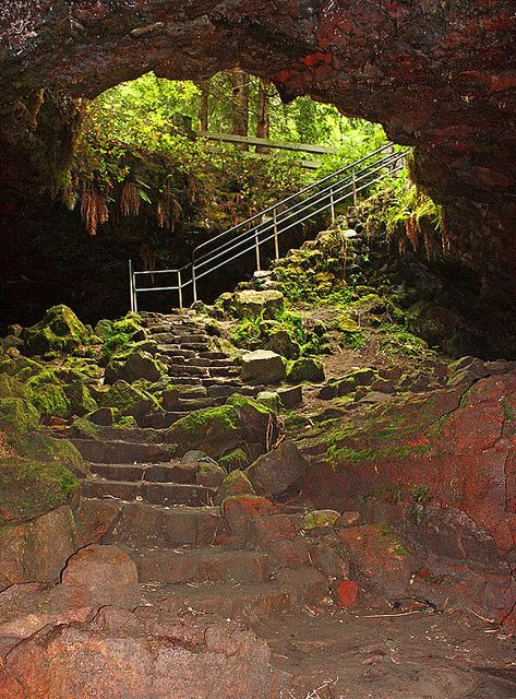Ape Cave Lava Tube. Mt. St. Helens, Washington. This place is amazing wear good shoes, jeans lots of lights be ready to climb. Good work out