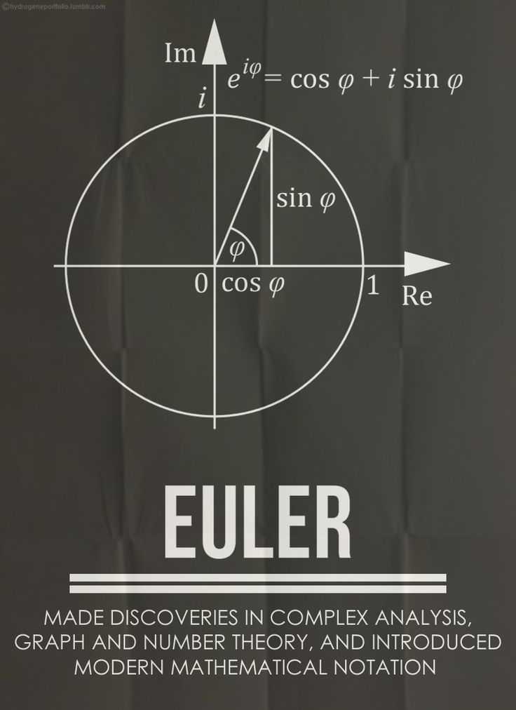 Minimal Posters -  Five Great Mathematicians And Their Contributions: Euler