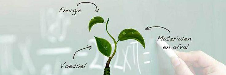 Twynstra Gudde heeft het Wellantcollege geholpen om haar duurzaamheidsambitie concreet te maken: http://www.twynstragudde.nl/case/het-wellantcollege-groene-huisvesting-voor-groen-onderwijs