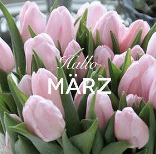 Hallo März! Winter ist jetzt out of Fashion! Wir wünschen euch einen schönen Sonntag.  #frühling #märz #mycolloseum