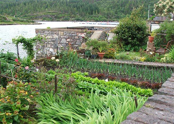 Best Vegetable Gardens Images On Pinterest - Rooftop vegetable garden ideas