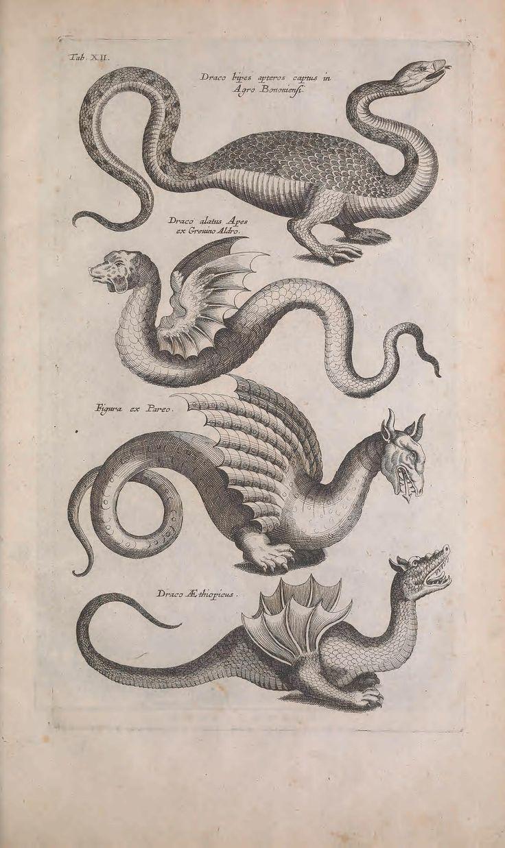 Dragons. Historiae naturalis de quadrupedibus libri. Biodiversity Heritage Library