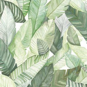 Tropisch Behang Banano - Coordonné Anima Behangpapier Collectie   Het tropisch behang Banano van Coordonné heeft schtterende bananenblad bladeren. En past past perfect in de Jungalow trend.  Het ...