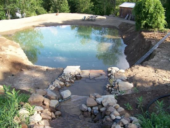 Check out this did it myself project swimming earth pond for Concrete backyard pond