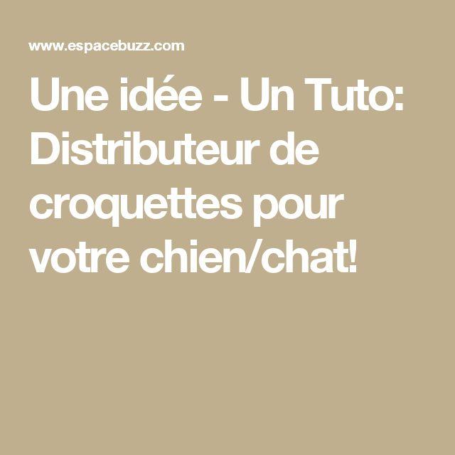 Une idée - Un Tuto: Distributeur de croquettes pour votre chien/chat!
