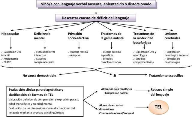 ¿QUÉ ES EL TEL? El Trastorno Específico del Lenguaje es un trastorno grave y duradero que afecta a la adquisición del lenguaje desde su...