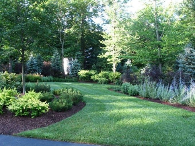 layering shrubs and trees make for an excellent natural privacy fence
