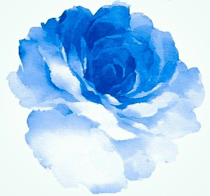 Blue watercolor rose | Wedding Ideas | Watercolor Tattoo ...