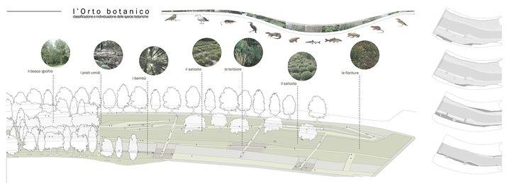 Orto Botanico Diffuso. Ostiense-MarconimARGINIbotanici. Ponte Marconi-Basilica S.Paolo #botanical #garden #project #landscape #riverfront #conceptual #plant #framework