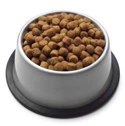 Prisoners served dog food by mistakeOwners Scrambled, Articles Worth, Dog Food, Food Recall, Contamination Food, Food Brand, Pets Diet, Dogs Food, Pets Food