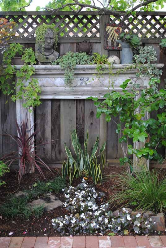 That Backyard Fence