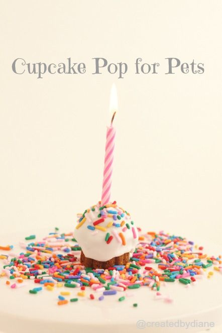 Cupcake pops for pets  http://www.createdby-diane.com/2013/01/how-to-make-a-no-bake-cake-for-you-cat-or-dog.html