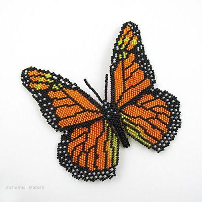 Motyl Monarch