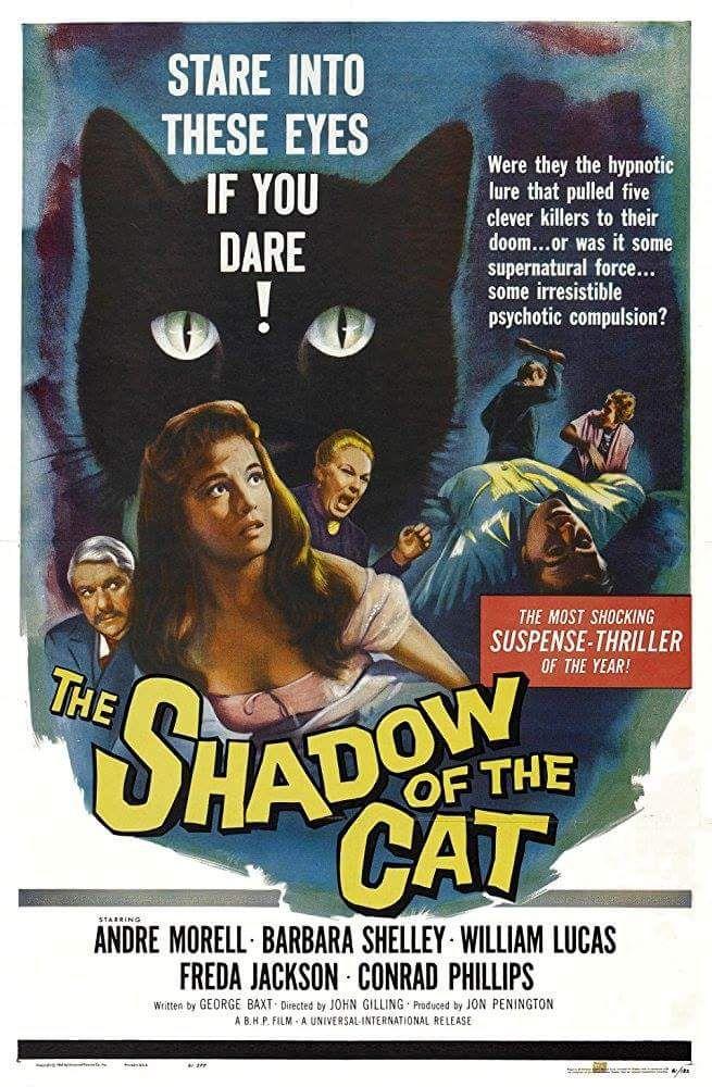 Pin By David Luna Enterprizes On Horror Movie Posters Classic Movie Posters Horror Posters Cat Movie